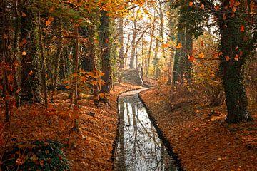 Herfst in Berlijn van Heiko Lehmann