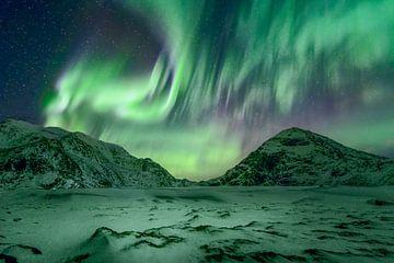 Lofoten Aurora van Peter Poppe
