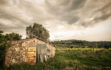 Toscane von Dennis Van Donzel