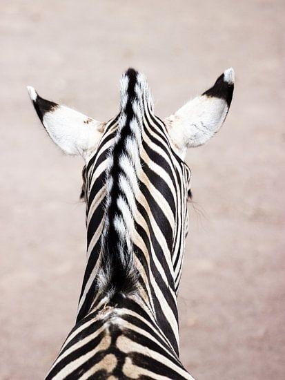 Portret van een zebra van Devin Meijer
