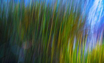 Abstract in groen en blauw van Wim Goedhart