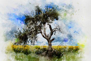 Der alte Baum von Claudia Evans