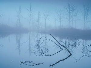 Mistyc atmosphere