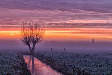 Nebel im Polder von Hans Aanen
