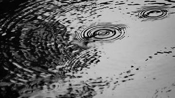 Regendruppels in het water