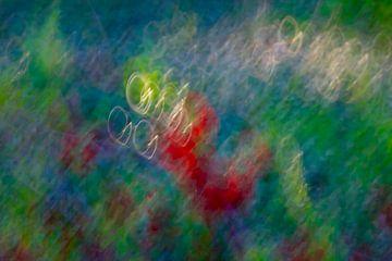Kleuren van de lente van Thomas Jäger