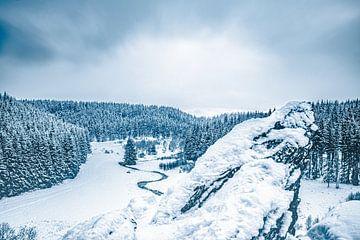 Blick über das Tal vom Rocher du Bieley/Bieley Felsen in Bütgenbach von Daan Duvillier
