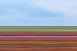 Tulpen Impressionistische strepen van Patrick Verhoef