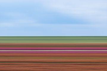 Tulpen Impressionistisch gestreift von Patrick Verhoef