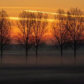Niederländische Landschaft, Sonnenaufgang von Nynke Altenburg