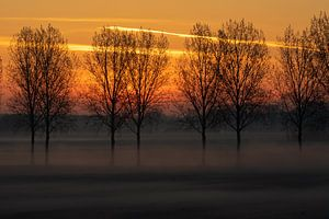 Nederlands landschap, zonsopkomst van Nynke Altenburg