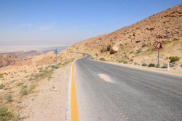 Weg naar Dode Zee van Petra Kooiman