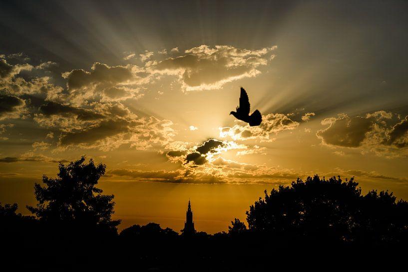 Amersfoortse zonsondergang von Sjoerd Mouissie