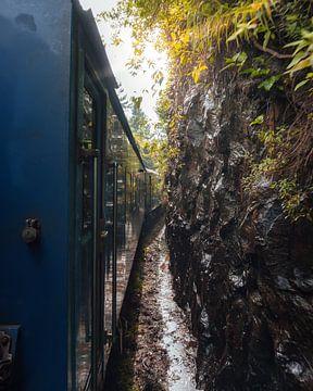 Sri Lankan Train through paradise von Ian Schepers