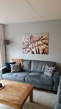Photo de nos clients: Pissenlit Spectre de couleurs sur Julia Delgado, sur toile