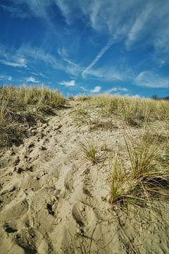 De Duinen van Vlissingen von DoDiLa Foto's