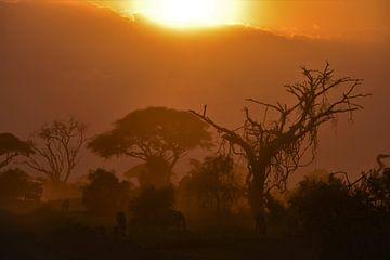 Zonsondergang in Amboseli National Park (Kenia) van Esther van der Linden