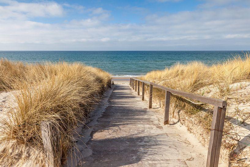 Weg zum Strand an der Ostsee von Christian Müringer