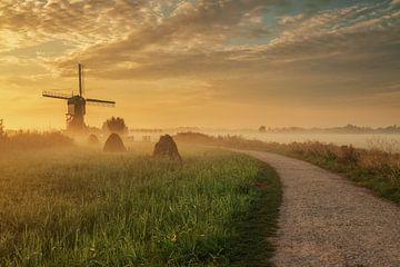 Het pad naar de molen