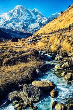 Annapurna sur Manjik Pictures