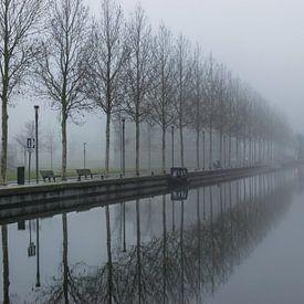 beau reflet d'une rangée d'arbres dans l'eau sur Patrick Verhoef