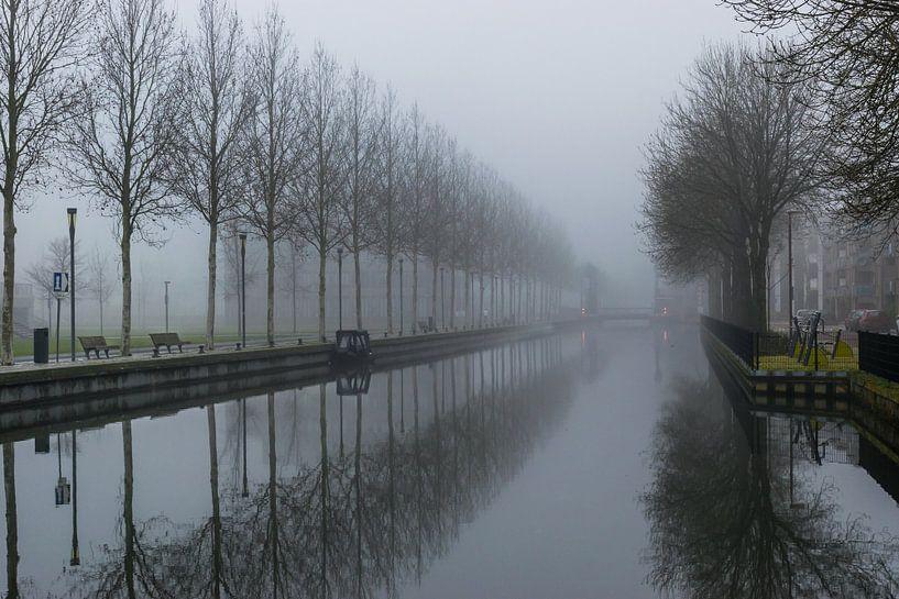 mooie reflectie van een rij bomen in het water van Patrick Verhoef
