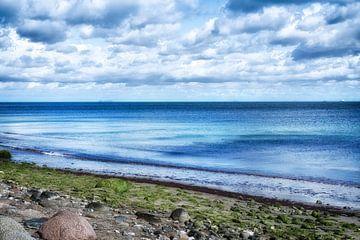 The blue Baltic Sea van