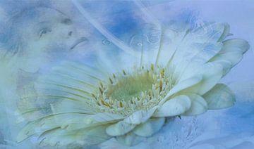 Ontspannen, wellness. Vrouw en bloem van Rietje Bulthuis