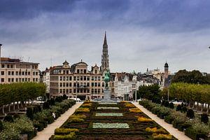 Brussel van Naresh Bhageloe