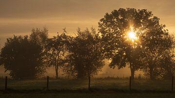 Zonsopgang op een mistige morgen van Erik Graumans