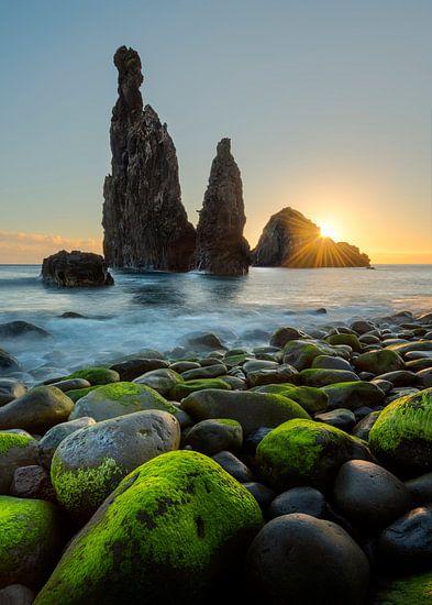 The Guardians in Ribeira de Janelo op Madeira