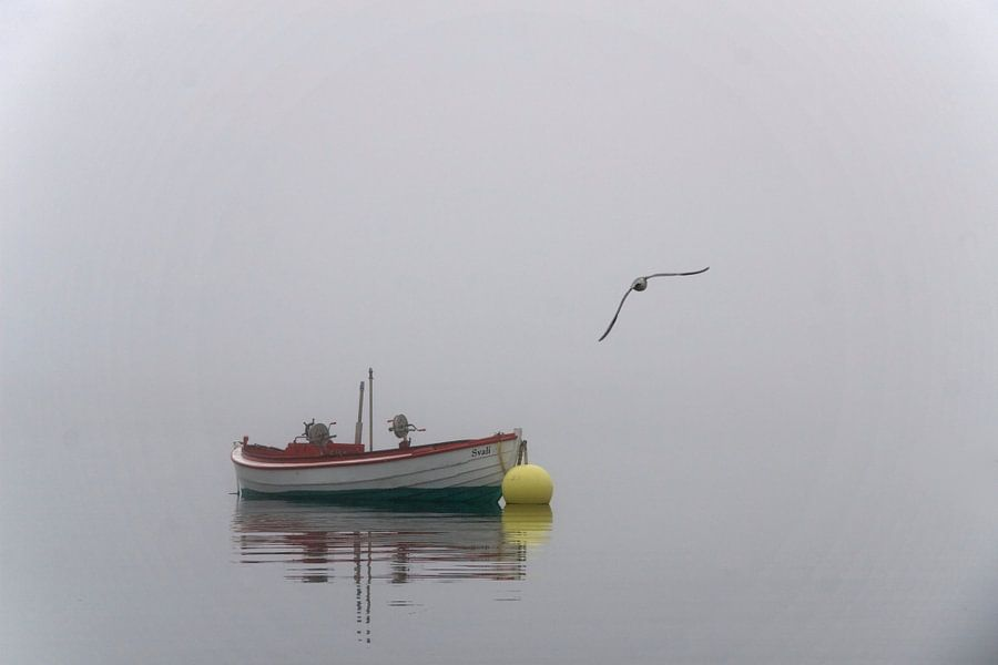 Boot in de mist van Ronald Jansen