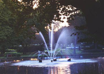 Een doorkijkje naar de fontein von Jaike Reinders