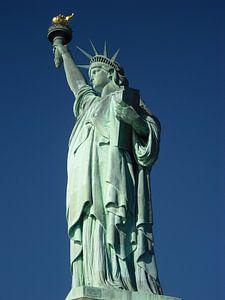 Vrijheidsbeeld (Statue of Liberty) van Sander van Klaveren