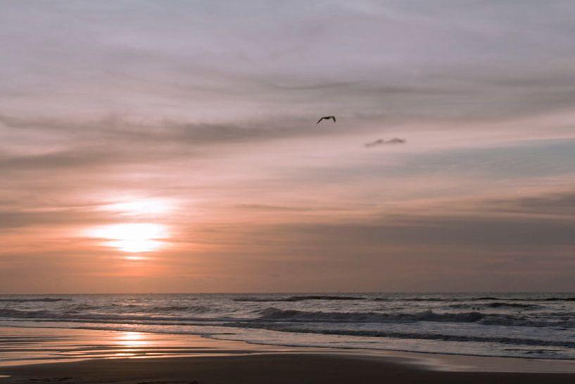 Zonsondergang aan de kust van D. Henriquez