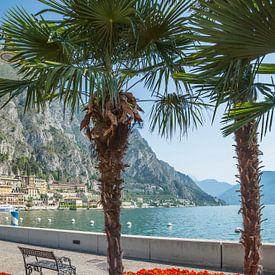 LAKE GARDA Gorgeous Riverside in Limone sul Garda van Melanie Viola