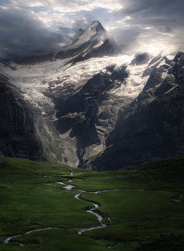 Berggipfel im Schnee von Rob Visser