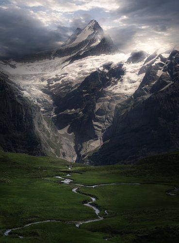 Bergtop in de sneeuw van