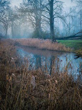 Ein verborgener Ort von Wim van D
