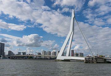 Erasmus brug in Rotterdam