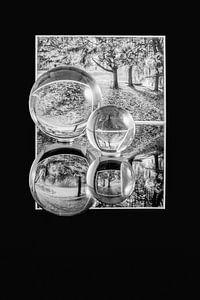 Reflections of Nature van