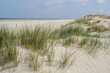 Duinlandschap Nederlandse waddeneilanden van Hilda Weges