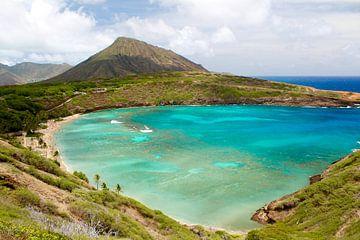 Hanauma Bay, Oahu, Hawaii van Janina Ballali