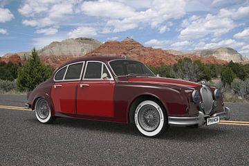Limousine Prince Red Mountains von H.m. Soetens