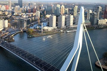 Rotterdam, Erasmusbrücke von Annie Postma