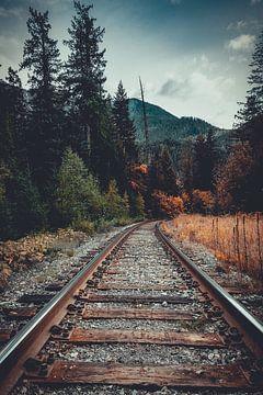Where Summer Meets Fall van Colin Bax