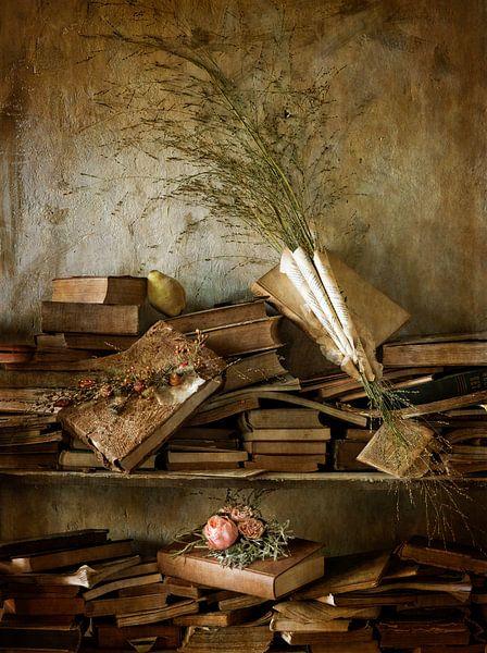 Stilleven oude boekenkast van Marion Lemmen