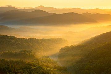Sonnenaufgang über dem Pfälzerwald von Daniela Beyer