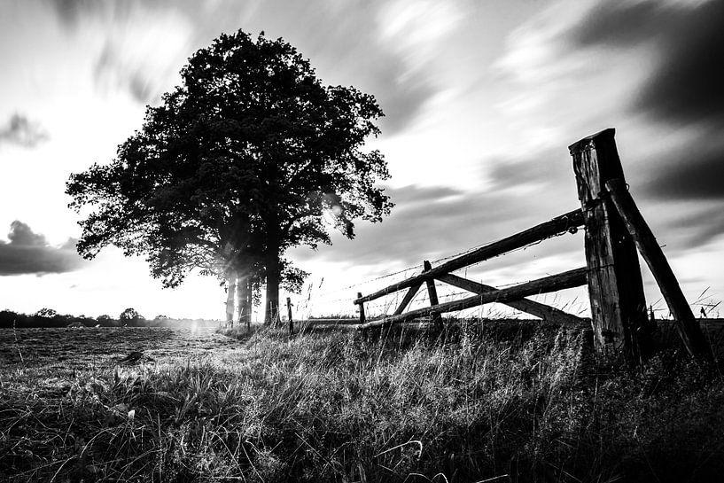 Zonsonder Markelo Black and white. van Frank Slaghuis