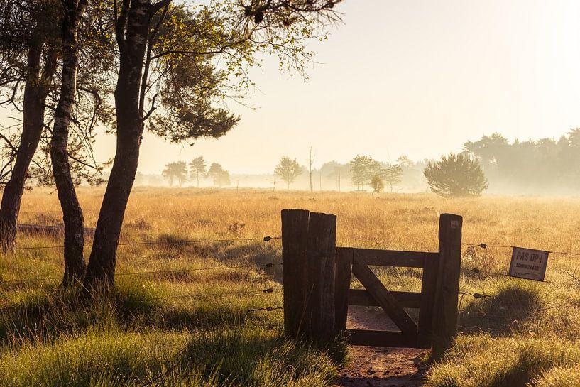 Strabrechtse Heide 216 van Deshamer